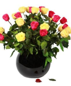 Mixed colour preserved rose bouquet