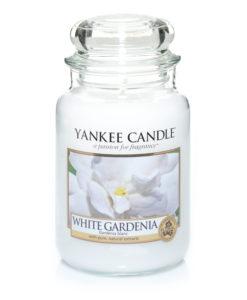 JAR SML WHITE GARDINIA