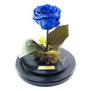 forever rose royal blue